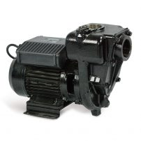 High flow diesel pump, transfer pump